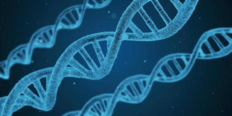 IMPORTANCIA DE LOS TEST GENETICOS EN EL DIA MUNDIAL DE CANCER OVARIO