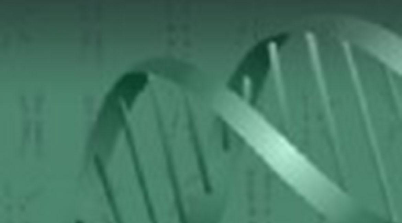 El IMOMA contribuye a identificar nuevos genes implicados en cáncer de páncreas
