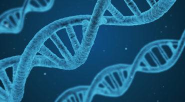 Dia mundial del ADN