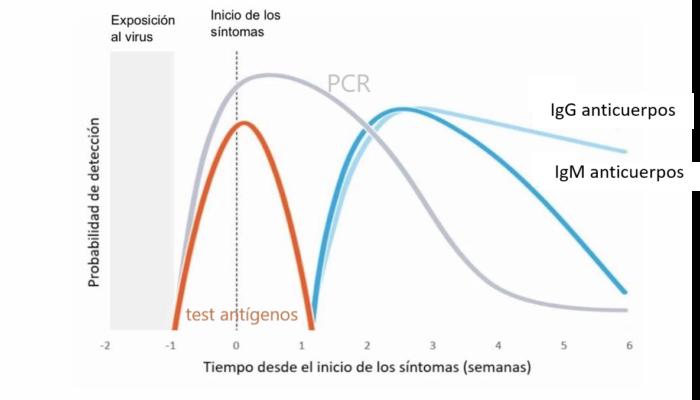 idoneidad de test COVID según fase del virus