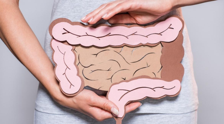 Cáncer de colon y recto. Tratamiento, prevención y medicina personalizada